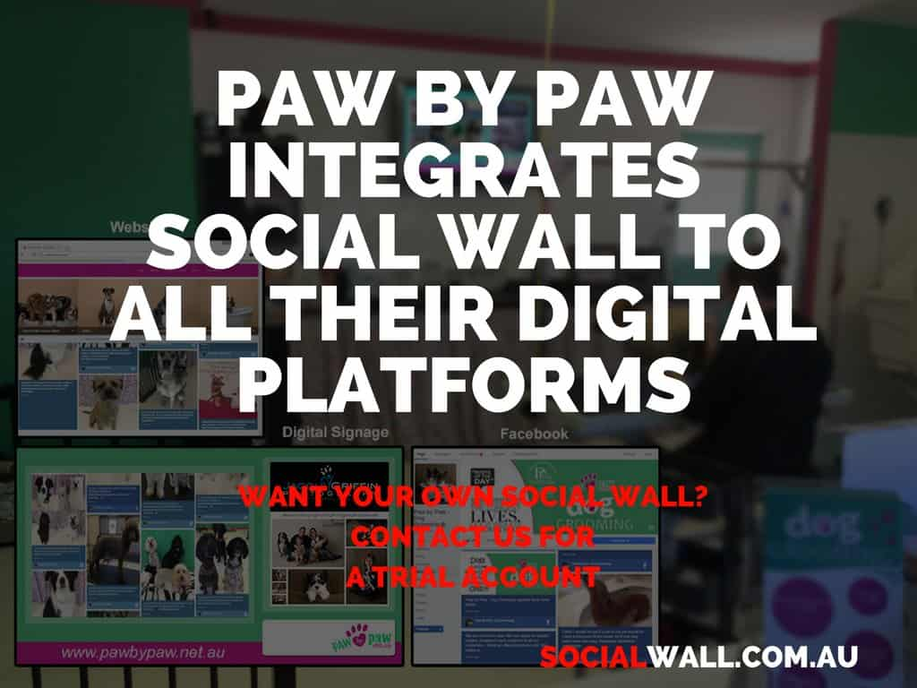 PAW BY PAW INTEGRATES SOCIAL WALL TO ALL THEIR DIGITAL PLATFORMS