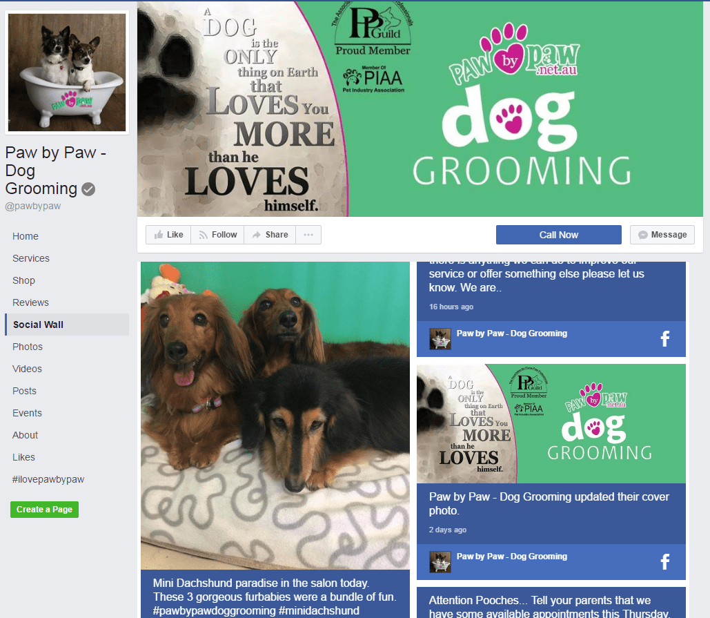 Paw By Paw Social Wall on Facebook Page