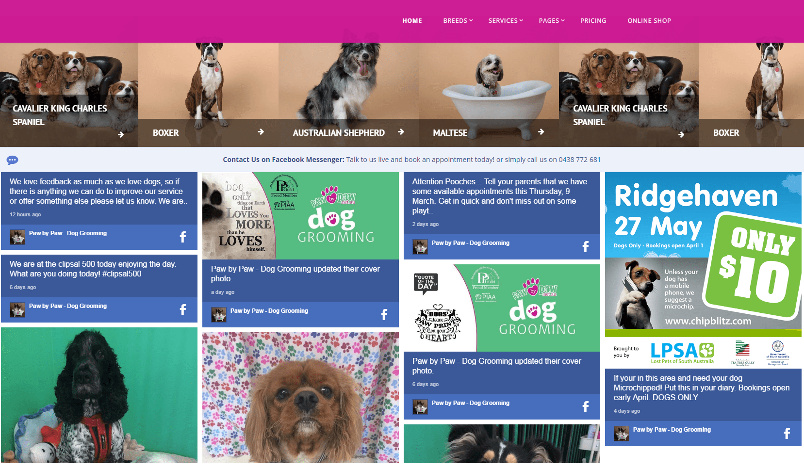 Paw By Paw Social Wall on website